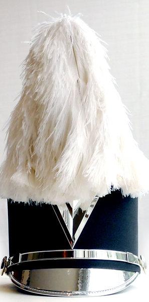 """Fountain Ostrich Plume 12"""""""