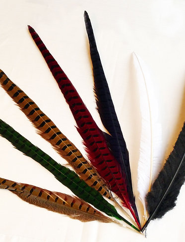 Accents Feather - English Pheasant (Natural)