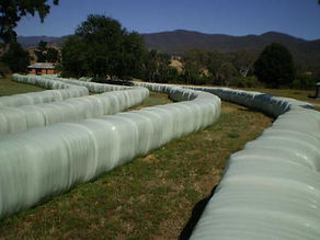 Bale Wrap Silage Film for Inline Wrapping Square Bales Rani Wrap