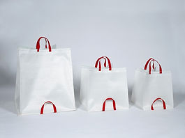 Box Bag Blanc
