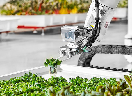 Vertical farming. How to feed 10 Billion people?