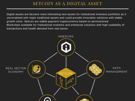 Setcoin as a digital asset