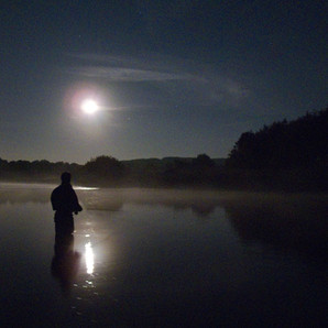 Night fishing Island Pool.jpg