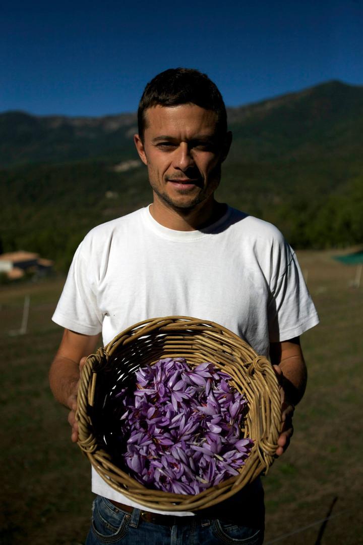 Sylvain Martinez-Ciccolini