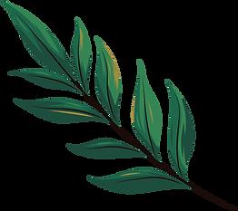 leaf6.png