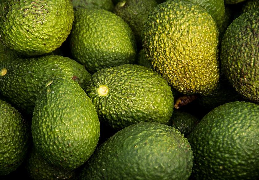 hass-avocado-882635_1920.jpg