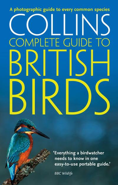 Collins guide to British birds