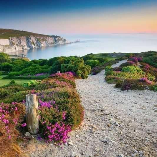 Isle of Wight - Headon Warren