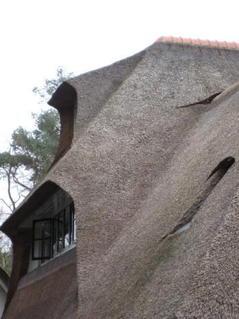 architect villa bilthoven