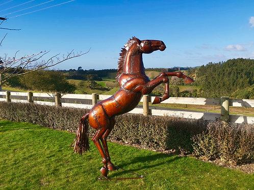 Rearing Horse # 1