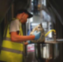 Brixton - Brewery Activity 021.jpg