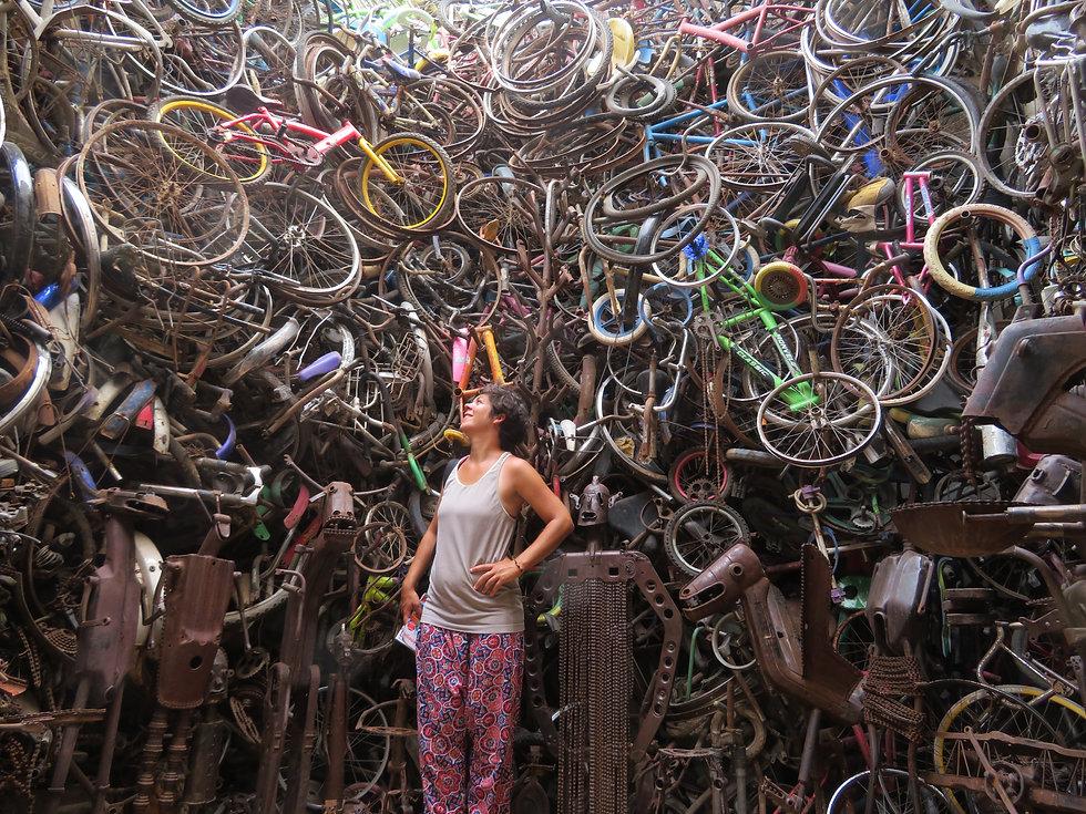 unartiste récupérateur de vélo.JPG