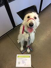 Ella Graduation.jpeg
