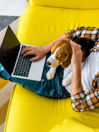 WFH Tips for Knowledge Workers