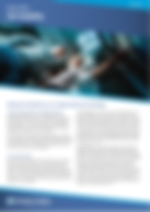 4D Visibility White Paper.PNG
