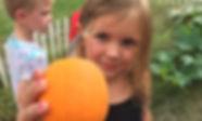 Garden Pumpkin.jpg
