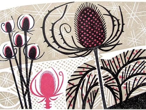 "Clare Curtis ""Winter Garden"""