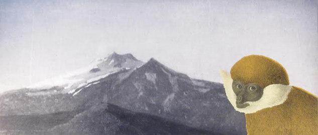Berget