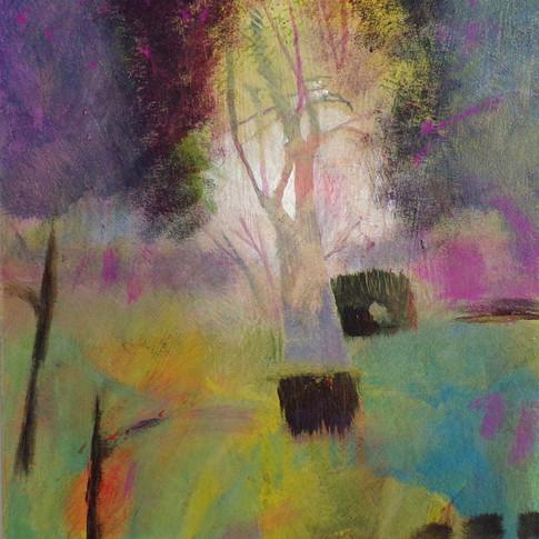 """""""Tree light"""""""