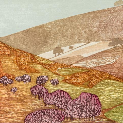 """Patchwork Fields, Bilsdale"""