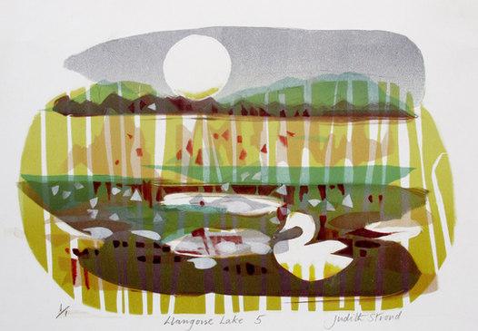 Llangorse Lake 5