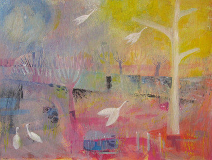Swans and Sunight