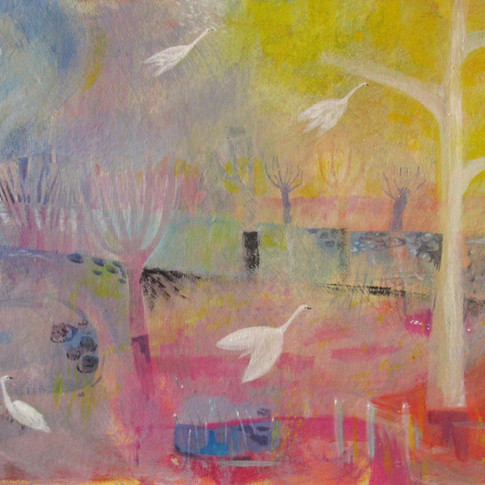 """""""Swans and sunlight"""""""