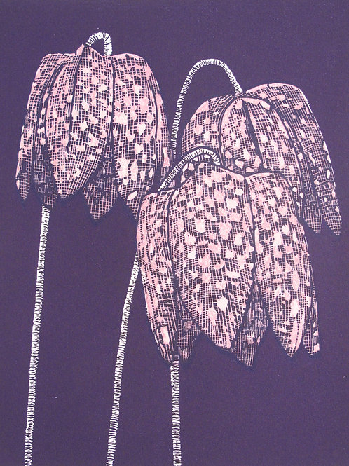 "Richard Shimell ""Fritillaries I"""