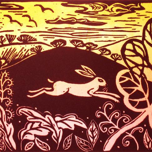 "Diana Croft ""Autumn Hare"""