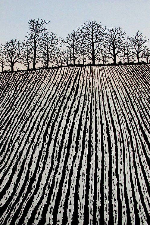 """Richard Shimell """"Ploughed Field"""""""