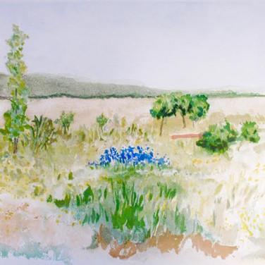 Astri Bergman Taube, La Plaine de Gordes