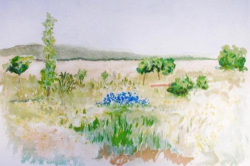 "Astri Bergman Taube ""La Plaine de Gordes"""