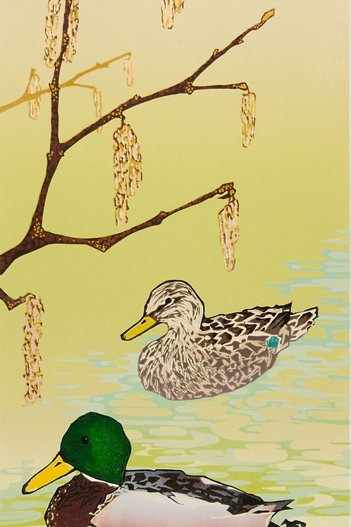 "Laura Boswell  ""Mallard Ducks with Hazel Catkins"""