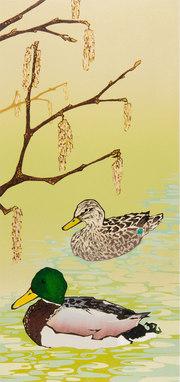 Mallard Ducks with Hazel Catkins