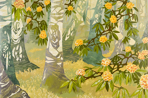 "Laura Boswell  ""Birch and Rhododendron"""