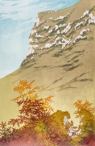 Autumnn Colour