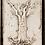 T-191 TREE OF LIFE EVOLUTION SID DICKENS MEMORY BLOCK