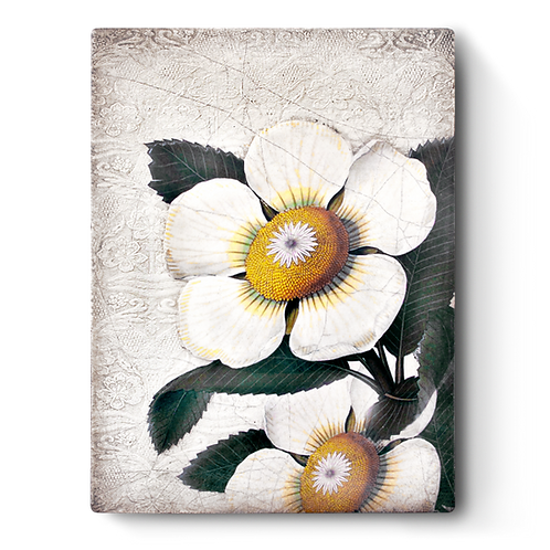 T-487 WHITE BLOSSOMS SID DICKENS MEMORY BLOCK