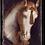Thumbnail: T-104 WHITE HORSE