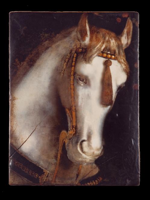 T-104 WHITE HORSE