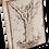 Thumbnail: T-191 TREE OF LIFE EVOLUTION