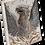 Thumbnail: T-321PHOENIX