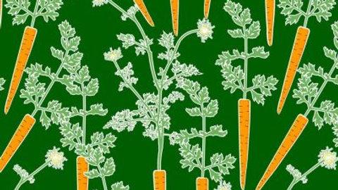 Carrot L/S Twirly Dress