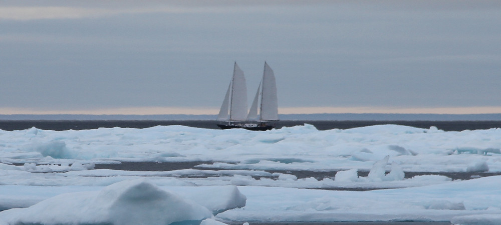 29th a Novara in full sail having punched her way through the Bellot Strait ice.