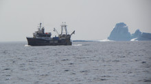 Whales, Icebergs and fishing boats