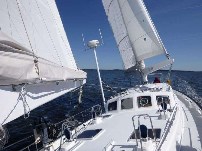 Under Sail again