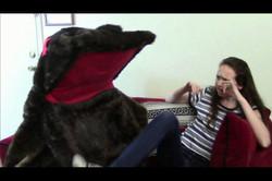 The Weeblefester Fur