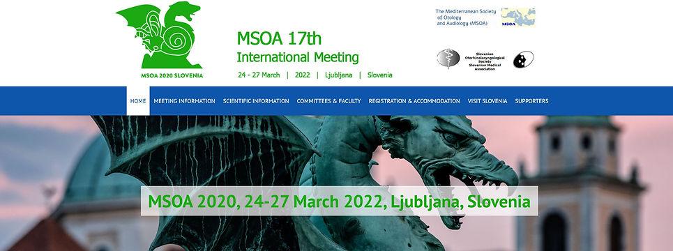 msoa2020 banner.JPG