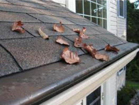 Gutter Rudder - The Finest in Gutter Protection