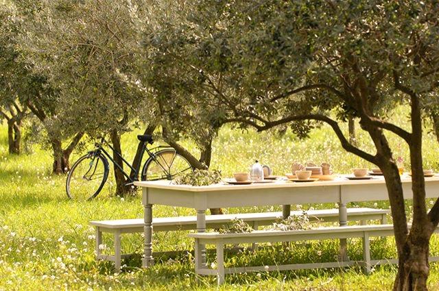Olive Garden Maison Alegria